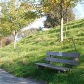 alte Steinacherwtrasse